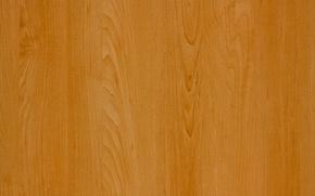 Картинка yellow, wood, brown, pattern, Brown clear
