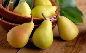 Обои листики, фрукты, миска, груши