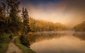 Обои туман, осень, река