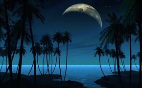 Картинка пейзаж, ночь, пальмы, планета, спутник, вектор