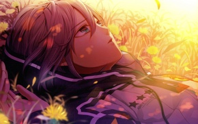 Картинка лето, трава, цветы, лицо, куртка, amnesia, orion, by mai hanamura