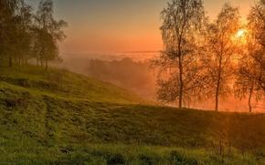 Картинка небо, трава, облака, деревья, пейзаж, закат, природа