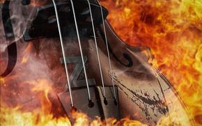 Картинка скрипка, 2014