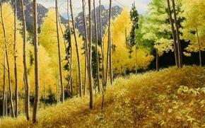 Картинка осень, горы, картина, покой, сентябрь, аспен