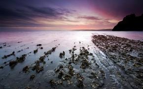 Обои море, берег, 154, горизонт, камни