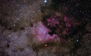 Обои Туманность, звезды, Северная Америка, в созвездии Лебедь