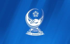 Картинка логотип, эмблема, Armenia, Армения, Армянская Премьер-лига, Armenian Premier League, Бананц, FC Banants, ФК Бананц, Banants