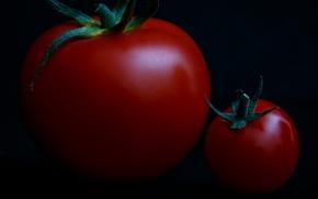 Картинка макро, маленький, большой, помидоры