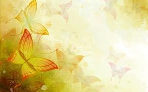 Картинка бабочка, краски, крылья, вектор, силуэт, мотылек