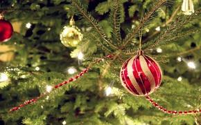 Картинка украшения, красный, огни, праздник, ель, шарик, deviantart, bo0xVn