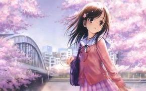 Картинка девушка, цветы, розовый, наушники