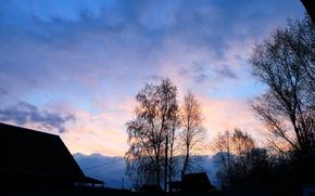 Картинка деревья, закат, природа, красота, весна, розовый закат, русская природа