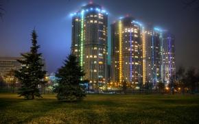 Обои Troparevo, Mirax park, деревья, поляна, Россия, ели, огни, ночь, Москва, трава