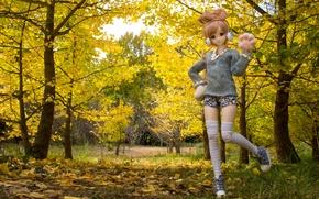 Картинка осень, листья, деревья, природа, игрушка, кукла