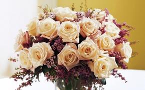 Картинка цветы, розы, букет, кремовый, бежевый