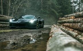 Обои ferrari, laferrari, black, supercar, front, dark, forest