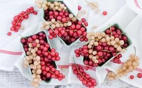 Картинка ягоды, кисти, смородина