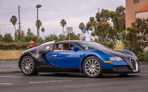 Картинка veyron, bugatti, black, blue, parking