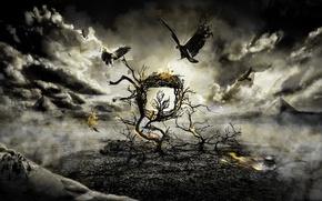 Обои птицы, тучи, дерево, огонь, мрак, борьба, паук, Gothic
