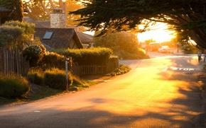Картинка дорога, зелень, машина, солнце, деревья, машины, природа, город, дом, фон, люди, дерево, widescreen, обои, улица, ...