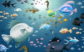 Картинка вода, рыбы, синий, аквариум, морские
