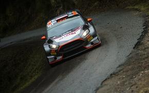 Картинка Ford, Поворот, WRC, France, Rally, Ралли, Fiesta, Обочина, Фас, Robert Kubica, Tour de Corse