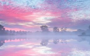 Картинка осень, туман, озеро, утро, Нидерланды, Сентябрь