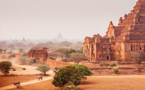Картинка дорога, небо, пыль, сухой, Мьянма, храмы, Баган, Лошадь корзину, Dhammayangyi Pahto Temple