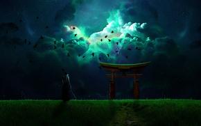 Картинка небо, птицы, ночь, оружие, воин, мужчина, тории