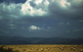 Картинка небо, пейзаж, тучи, контраст, сено