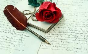 Картинка письмо, перо, роза, red, rose, flower, letter