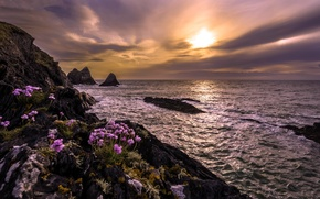 Обои море, скалы, закат