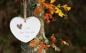 Картинка листья, дерево, надпись, сердце, висит