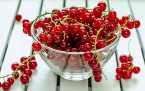 Картинка ягоды, стол, тарелка, красная, смородина