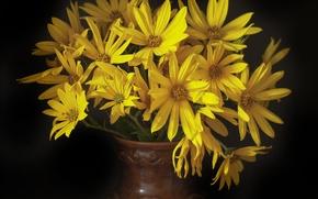Картинка желтые, букет цветов, фон темный