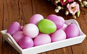 Картинка Holidays, яйца, Easter, разноцветные, Eggs, весна, Пасха