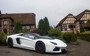 Картинка Roadster, Lamborghini, White, Aventador, LP 700-4