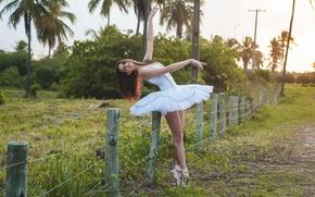Картинка девушка, природа, балерина