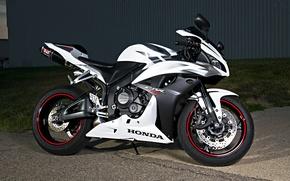 Картинка белый, чёрный, мотоцикл, white, honda, black, хонда, super sport, сбр600рр, cbr600rr, супер спорт