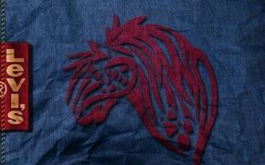 Картинка джинсы, фирма, levis