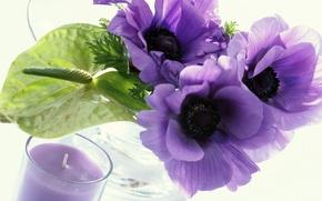 Картинка свеча, белый фон, фиолетовые цветы, прозрачная ваза