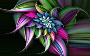Картинка цветок, линии, фон, спираль, объем