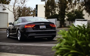 Картинка Audi, ауди, черная, black, rear