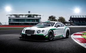 Обои Bentley, Continental, GT3, бентли, континенталь