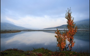 Картинка Норвегия, Norway, Hedmark Fylke, Blæsterdalen