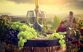 Обои бутылка, пробки, бочка, бокалы, виноград, вино, пейзаж