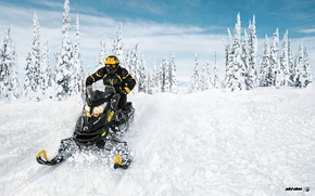 Картинка Снег, Snow, Forest, Лёс, Снегоход, Skidoo, Snowmobile, Ski-Doo