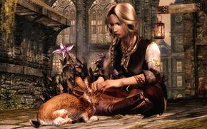 Картинка девушка, заяц, воин, skyrim, the elder scrolls v