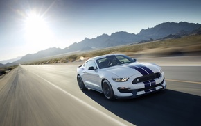 Картинка Mustang, Ford, Shelby, GT350, 2016