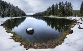 Обои озеро, снег, поздняя, деревья, осень, лес